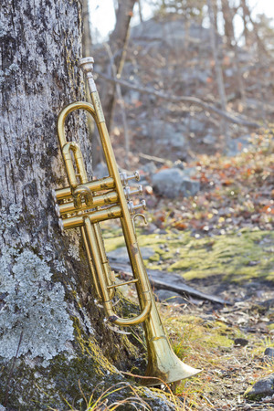 worn: Old worn trumpet out in the wilderness on trail fall Stock Photo