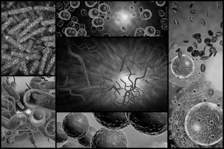 cholera: 3D microscope close up of various bacteria in collage imagery