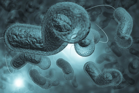 Close up 3D illustration of microscopic Cholera bacteria infection Stok Fotoğraf - 48889803