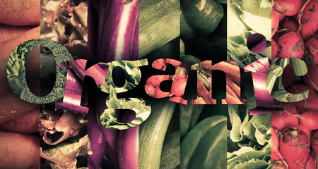 comiendo frutas: Healthy eating themed vegetables spell the word organic