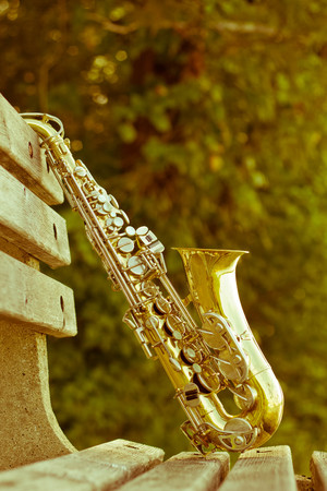 jazz: Summer Jazz saxophone in nature propped on park bench