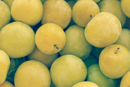 mini farm: Fresh organic yellow plums displayed at farmers market
