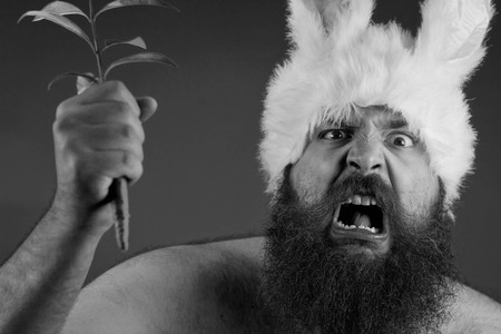 mouthing: Angry bearded man wearing bunny ears waves carrot to attack