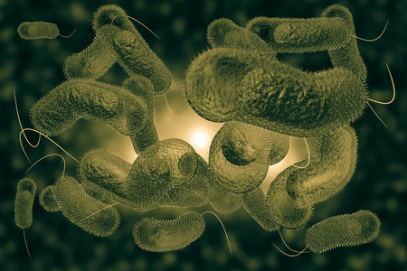 intestinal cancer: Close up 3D illustration of microscopic Cholera bacteria infection Stock Photo