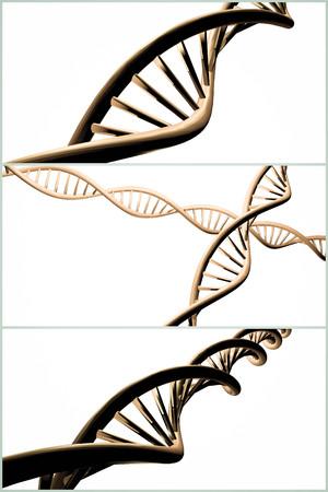 3D-DNA-Strang-Collage mit lebendigen Farben für Genetik Hintergrund Standard-Bild - 48915718
