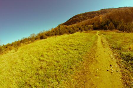 dirt path: Dirt path leading to Appalachian mountains on cool autumn day Stock Photo