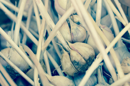 bulb and stem vegetables: Close up garlic display with stems at farmers street market Stock Photo