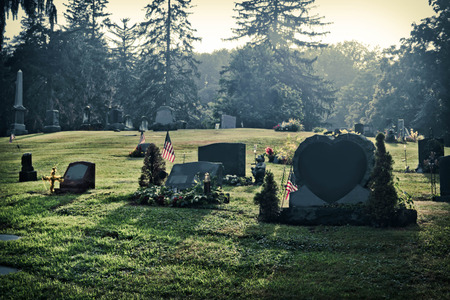 unmarked: Blank graves in a graveyard in early morning