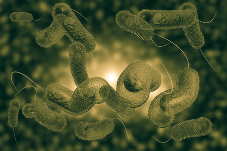 Close up 3D illustration of microscopic Cholera bacteria infection