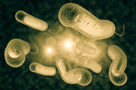 colera: Close up 3D ilustración de la infección microscópica bacteria del cólera