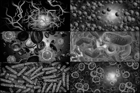 staphylococcus: 3D microscope close up of various bacteria in collage imagery