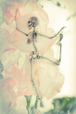 Scary dancing fairy skeletons on vintage flower background Stock Photo