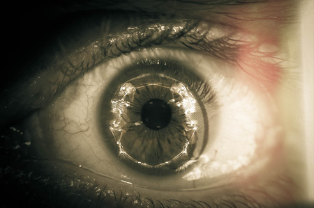 globo ocular: Temas de Halloween disparo macro primer plano de globo ocular con la reflexi�n esqueleto