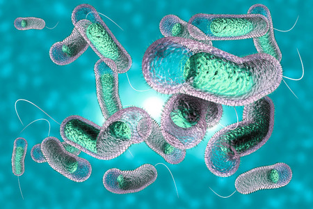 microscopic: Close up 3D illustration of microscopic Cholera bacteria infection Stock Photo