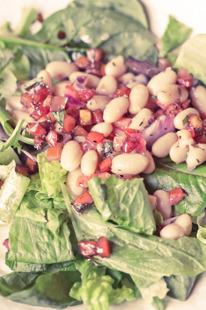 roman beans: Cannellini bean salad on bed of romaine lettuce with diced sauteed tomato Stock Photo
