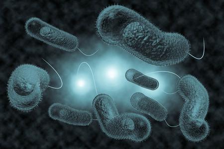 cholera: Close up 3D illustration of microscopic Cholera bacteria infection Stock Photo