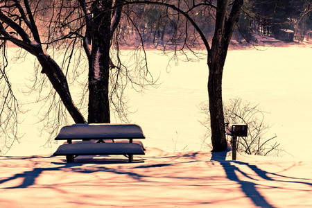Bright sunny day illuminates the frozen lake at this lonely park