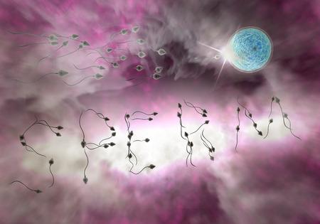 Peautre mot race de sperme pour imprégner un oeuf humain fertile Banque d'images - 50909579