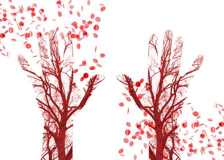 Close-up menselijke bloedvaten in mannelijke hand met bloedcellen in de achtergrond Stockfoto - 52936271