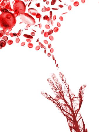 globulos blancos: Cerrar los vasos sanguíneos humanos en mano masculina con células de la sangre en el fondo Foto de archivo