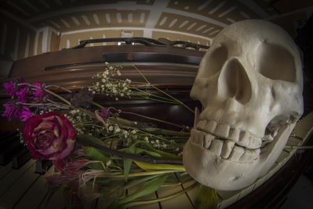 fish eye lens: Human skull holding rose between teeth on piano