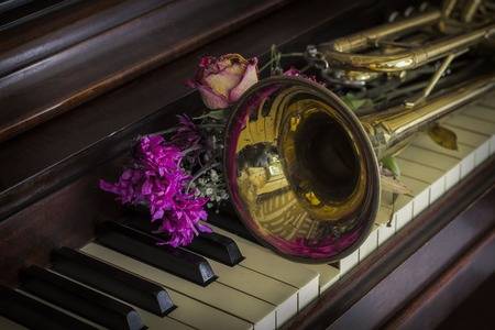 flores secas: Old and worn Jazz trumpet and piano with dried flowers