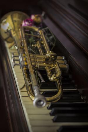 flores secas: Viejo y gastado trompeta del jazz y piano con flores secas