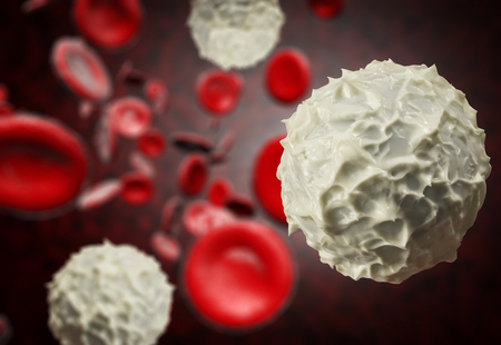 hematopoietic: Healthy human red and white bloodcells in close up 3d graphics render Stock Photo