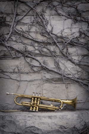 worn: Old worn trumpet stands alone against a grungy wall Stock Photo