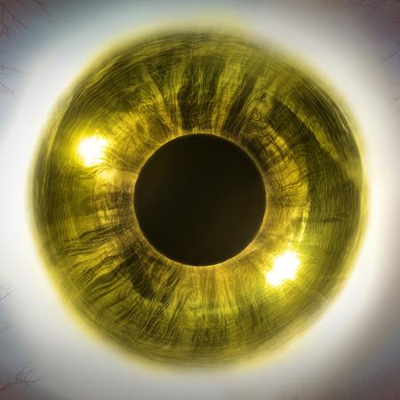 extreme close up: Macro extreme close up human eyeball background, 3D Illustration