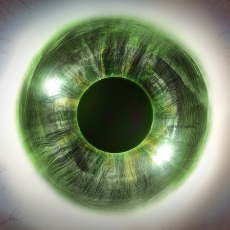 human eye close up: Macro extreme close up human eyeball background, 3D Illustration