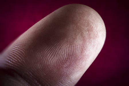 forensic science: Human pointer finger macro close up of finger print