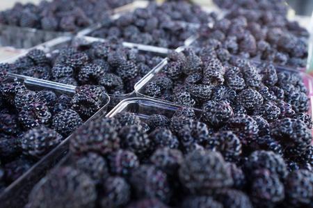 Fresh organic blackberries in closeup at local farmers market