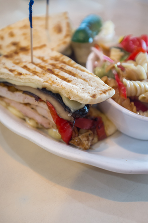 cole: Grilled mushroom chicken panini with pasta salad cole slaw and pickle