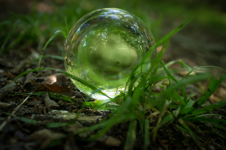 seer: Magic crystal ball on forest floor for summer fantasy imagery Stock Photo
