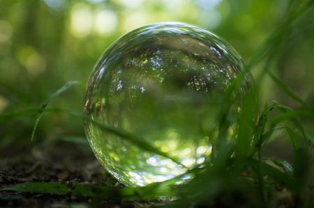 bola de cristal mágica en suelo del bosque para las imágenes de la fantasía del verano