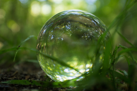 Magic crystal ball on forest floor for summer fantasy imagery Stock Photo