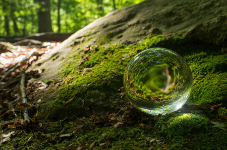 psychic: Magic crystal ball on forest floor for summer fantasy imagery Stock Photo