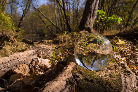 Magic crystal ball on forest floor for autumn fantasy imagery Stock Photo