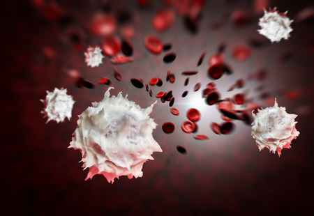 Healthy human red and white bloodcells in macro science image Stock Photo