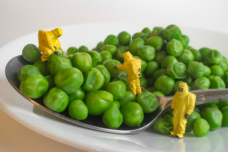 Miniature figurine hazmat team inspection of gmo food