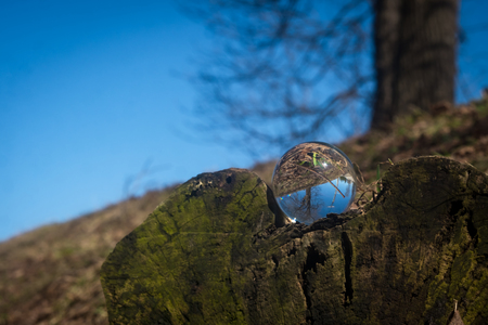 Magic crystal ball in nature for fantasy mystical background