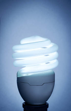 Compact fluorescent lightbulb with neon back lighting