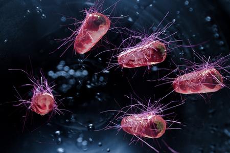 Escherichia coli also known as Ecoli bacteria health science concept Stock fotó