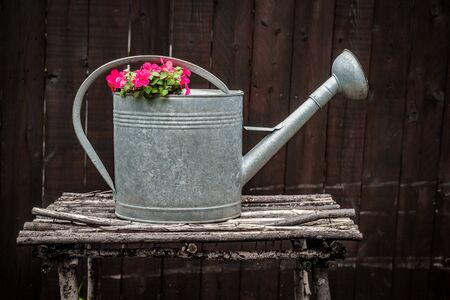 Summer flowers growing from antique metal watering can Stock Photo