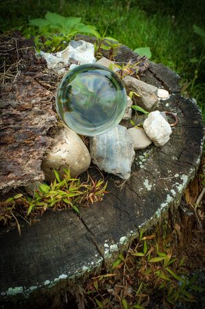 Fortune tellers magic glass crystal ball in nature Archivio Fotografico