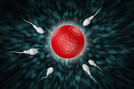 Swimming sperm race to impregnate a fertile human egg 3D digital illustration