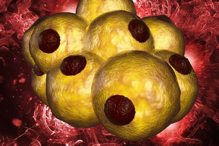 Healthy white human fat cells also known as adipocytes 3d illustration