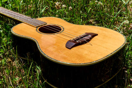 Acoustic baritone ukulele guitar laying in a grass field Stock fotó