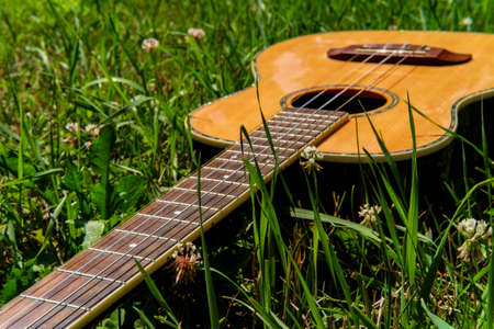 Acoustic baritone ukulele guitar laying in a grass field